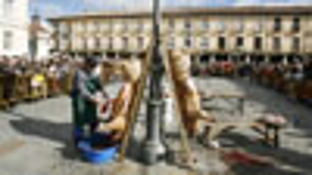 V Jornadas del ritual de la matanza en la plaza Mayor de Palencia